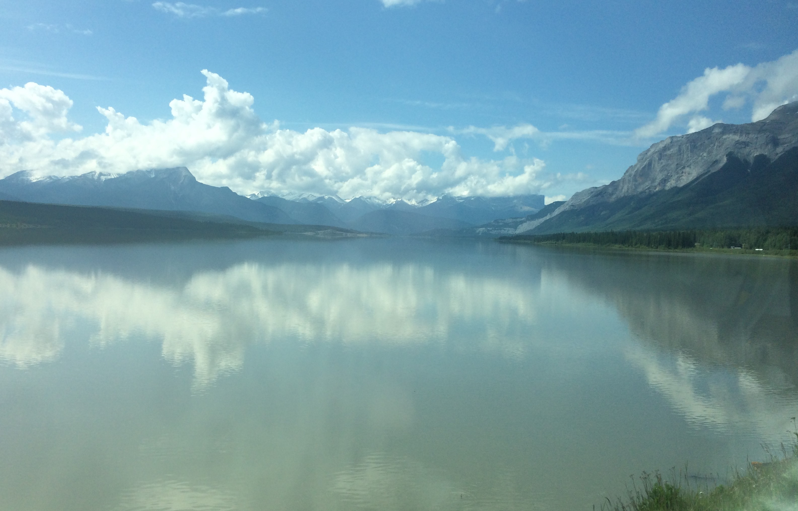 View from the train into Jasper