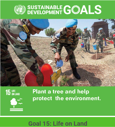 UN Sustainable Development Goal #15