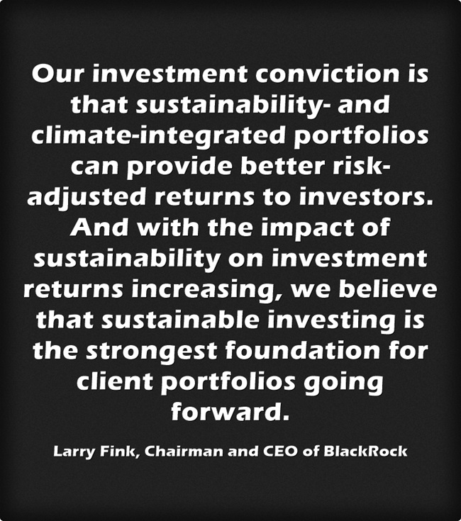 Excerpt from Larry Fink letter to CEOs