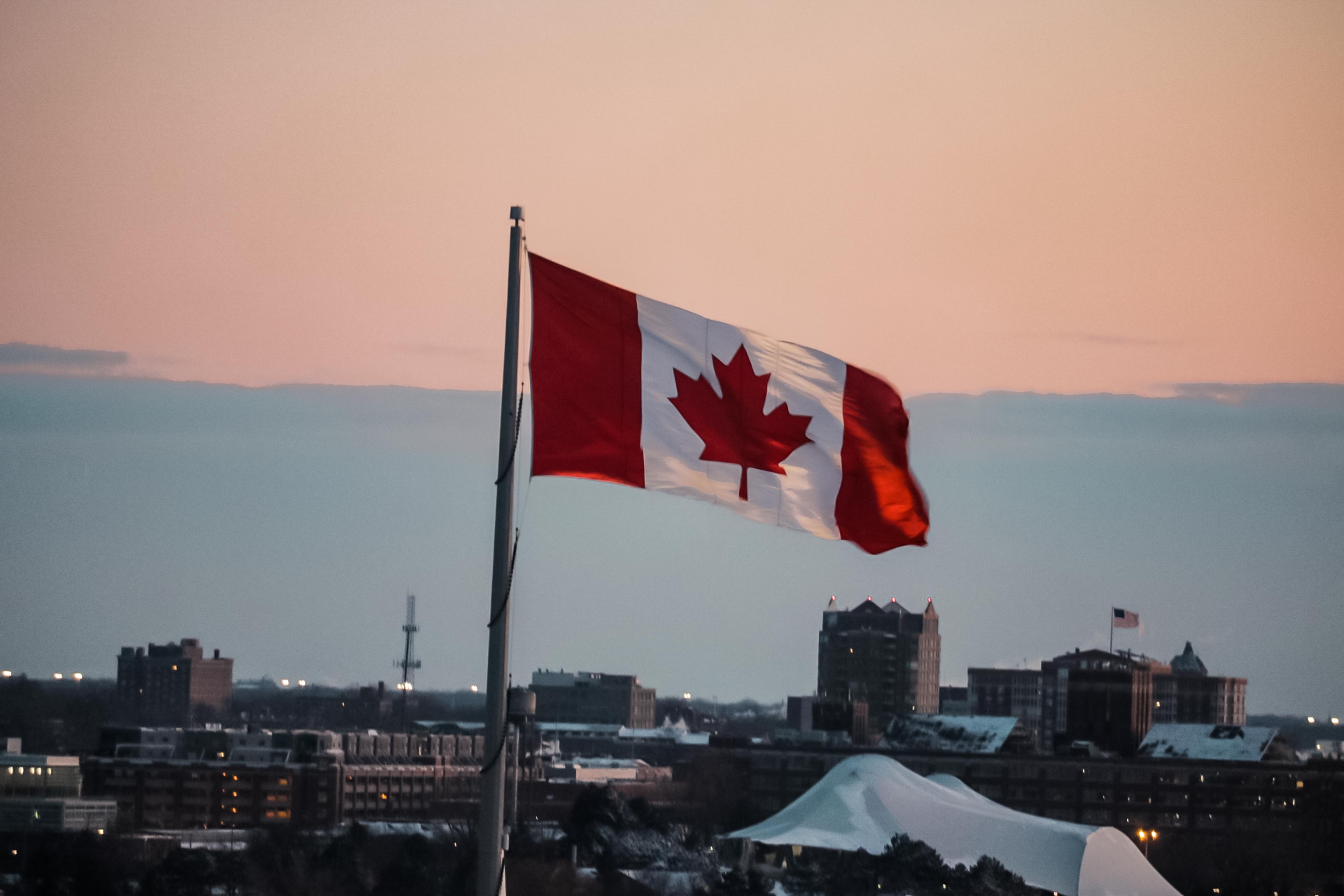 BoC surveys show expectations for gradual recovery