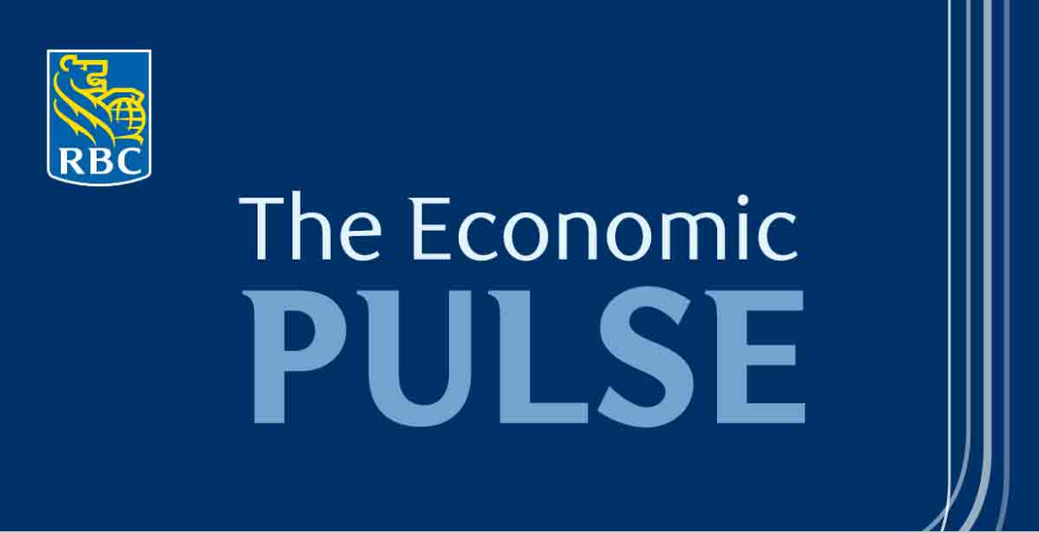 the economic pulse