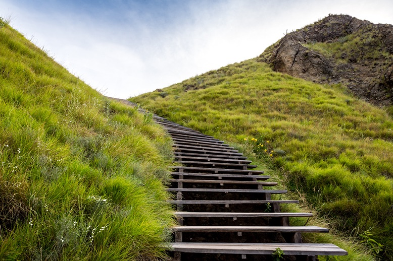 wooden-staircase-in-side-of-steep-grassy-hill-in-page