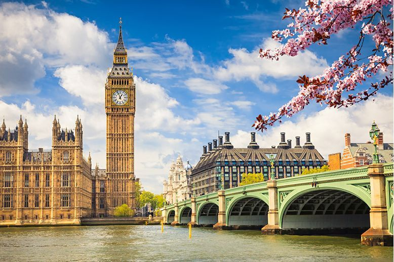 big-ben-and-westminster-bridge-london-with-blossoms-in-foreground-in-page