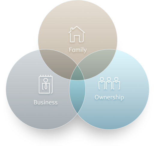 Specialized services for your family enterprise inforgraphic